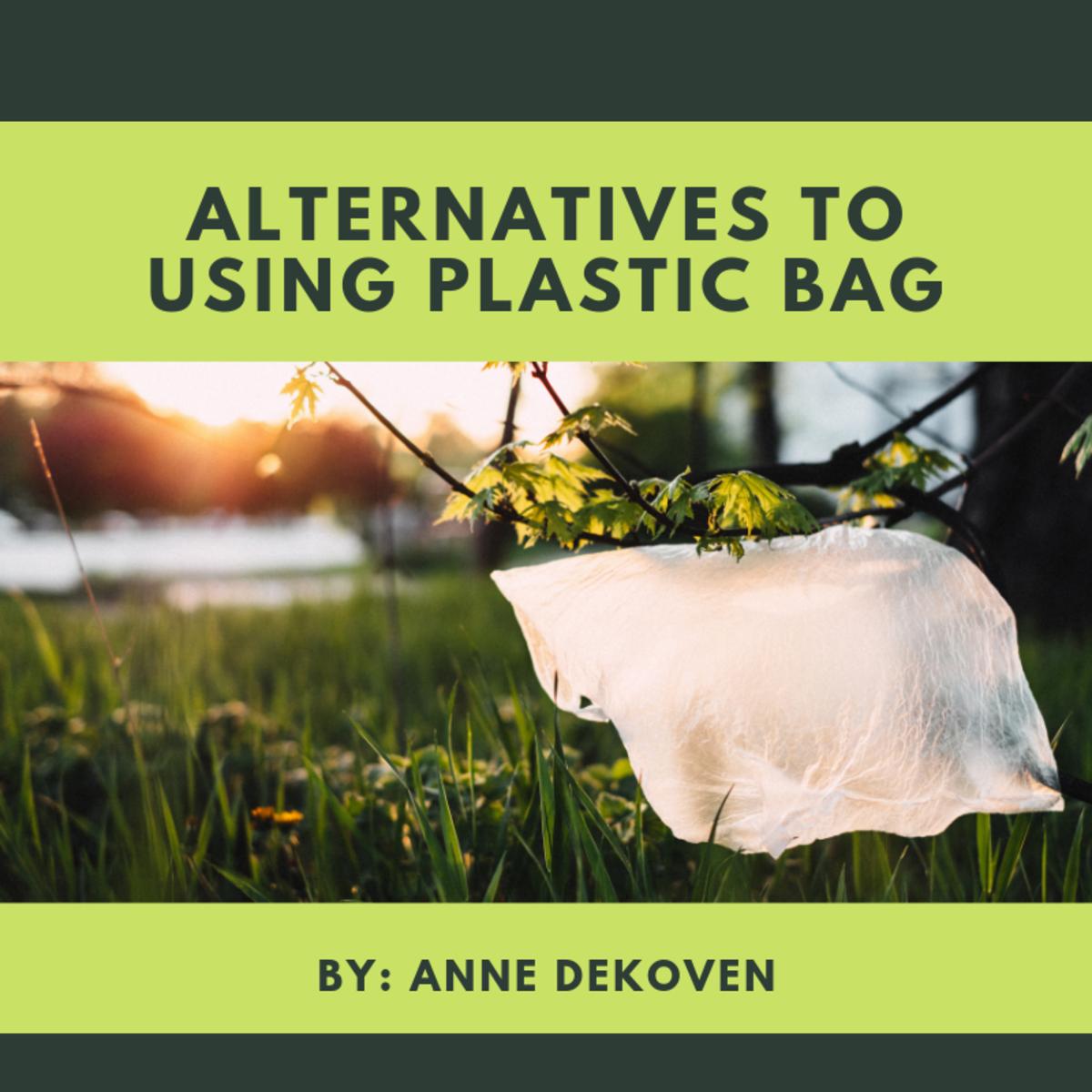Alternatives to Using Plastic Bag