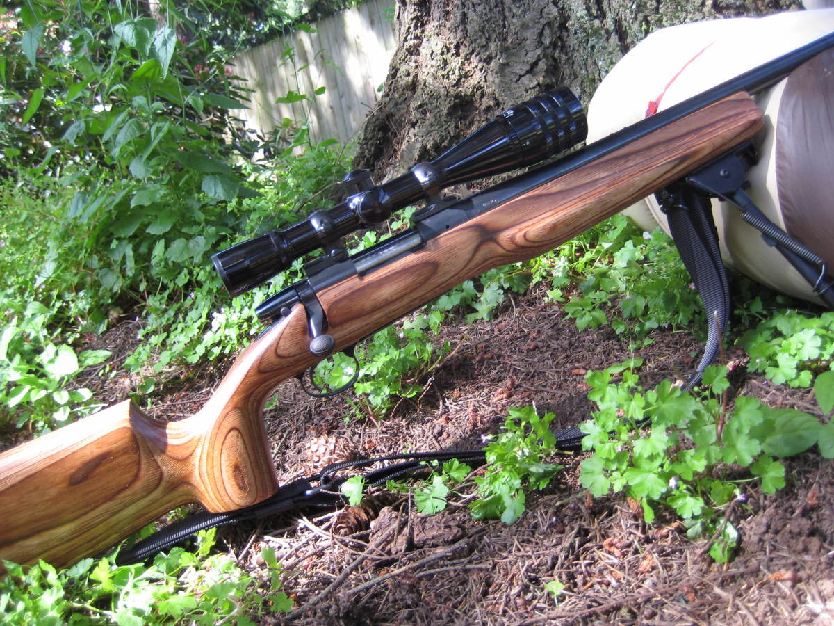 Remington Model 700BDL-V in .22-250, which has been upgraded over time.
