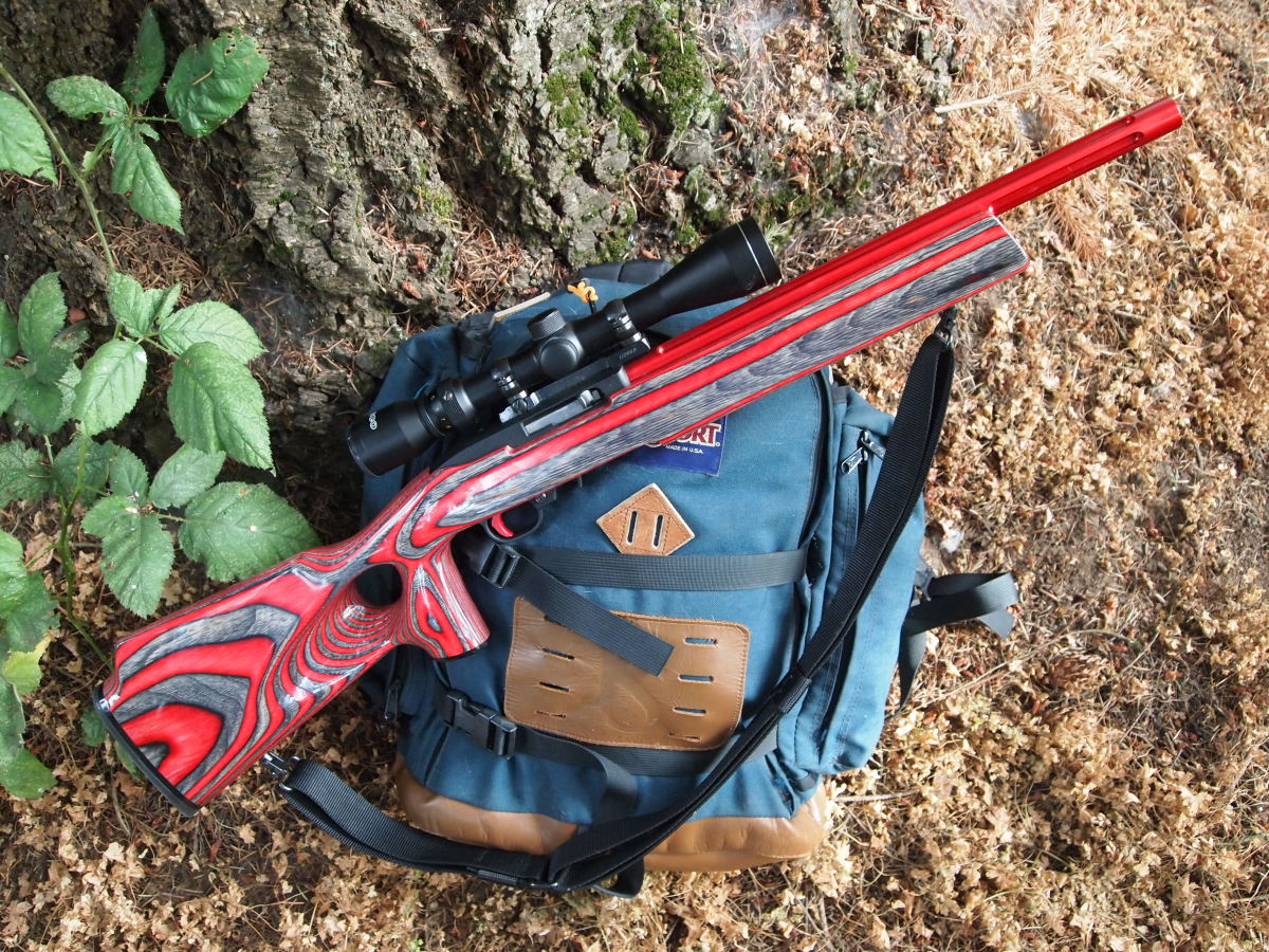 The Ruger 10/22, restocked, rebarreled and equipped a 3-9X scope. It is an excellent squirrel rifle.