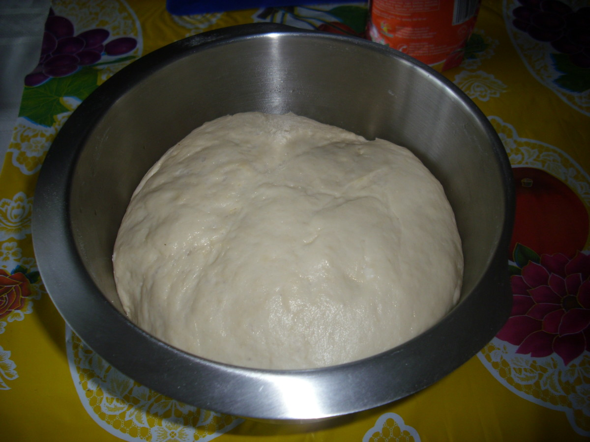Blended Dough, doubled in size