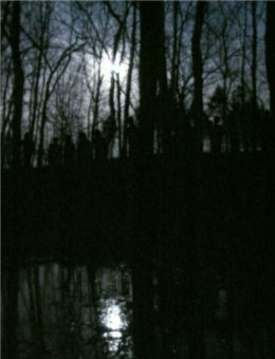 Shadow People In The Woods