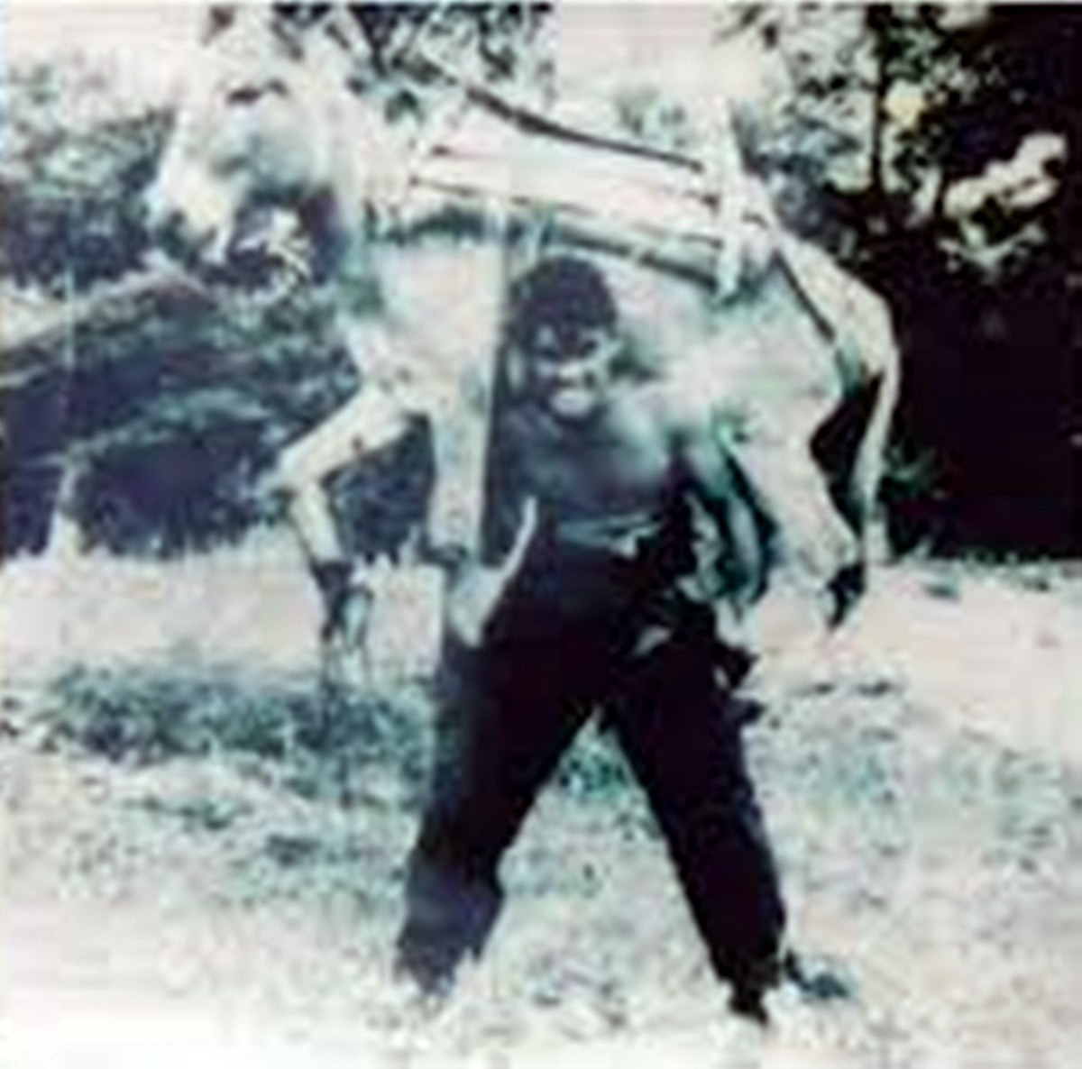 Historic photograph of a man carrying an adult donkey across his shoulders.