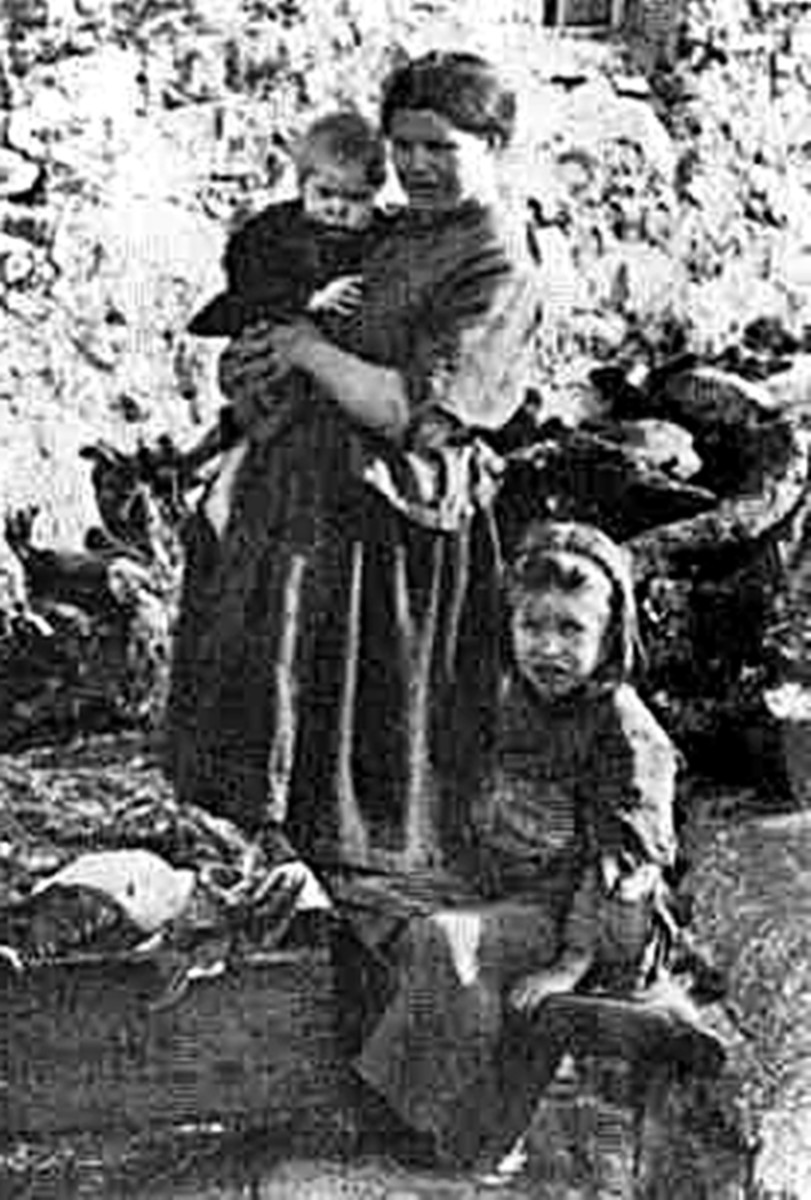 For many impoverished families in Ireland in the 19th century, potatoes formed their staple diet.