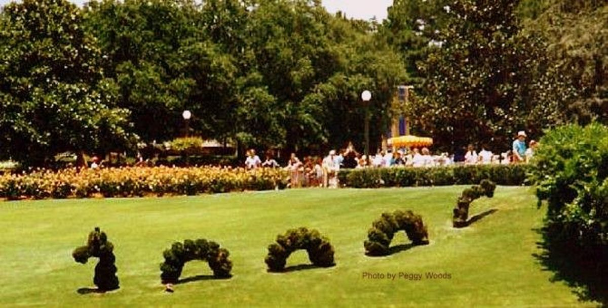 Walt Disney World Sea Serpent topiary
