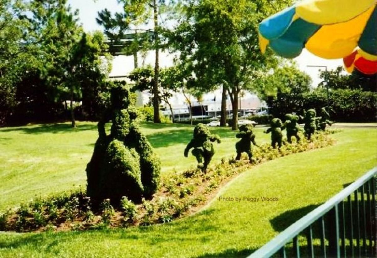 Snow White and the Seven Dwarfs topiary at Walt Disney World
