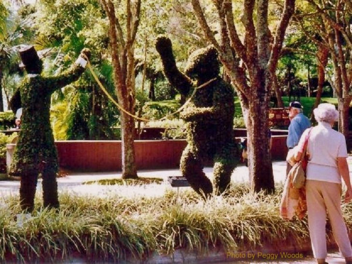 Dancing bear topiary with trainer at Cypress Gardens