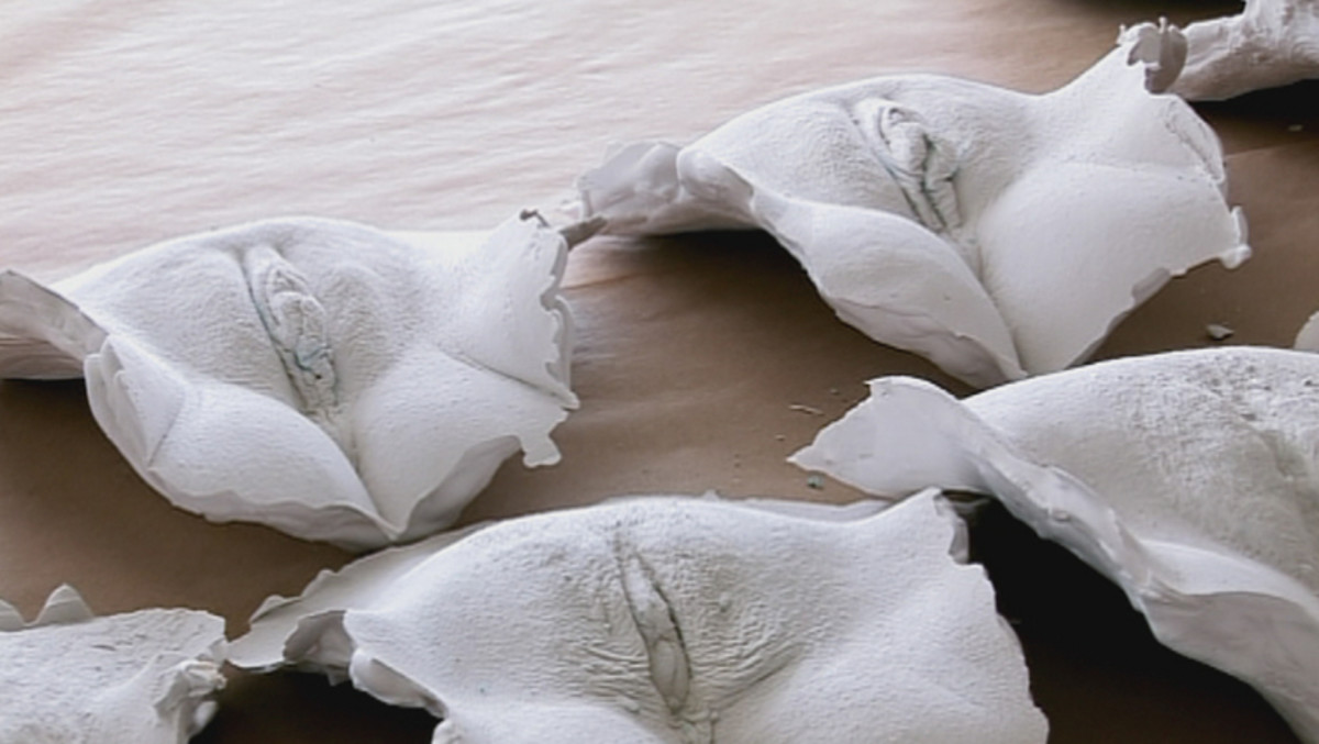 Plaster casts of various vaginas created during filming.