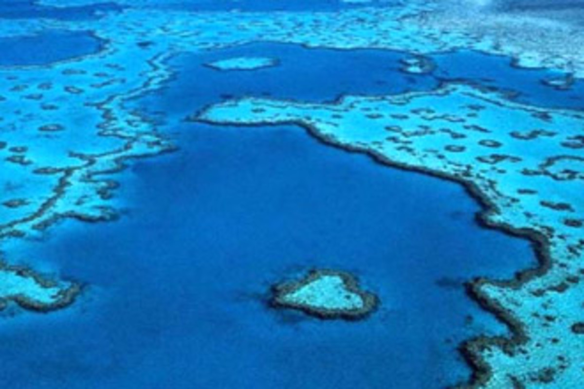 An oblique aerial of a small section of the beautiful Great Barrier Reef