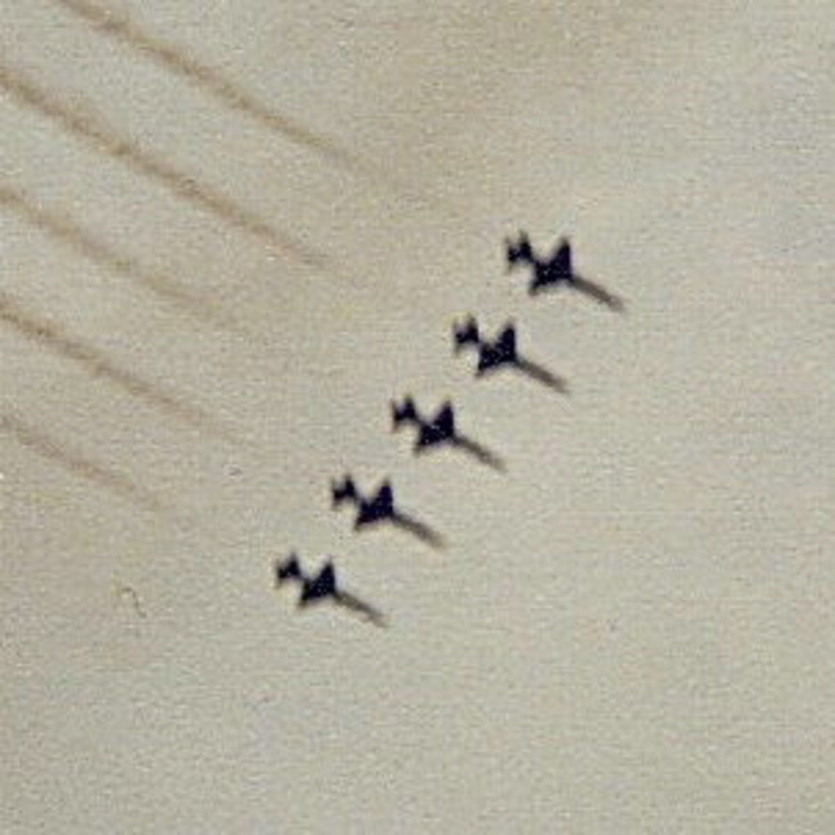 USAF Thunderbirds in T-38s, Randolph AFB, TX, circa 1980.