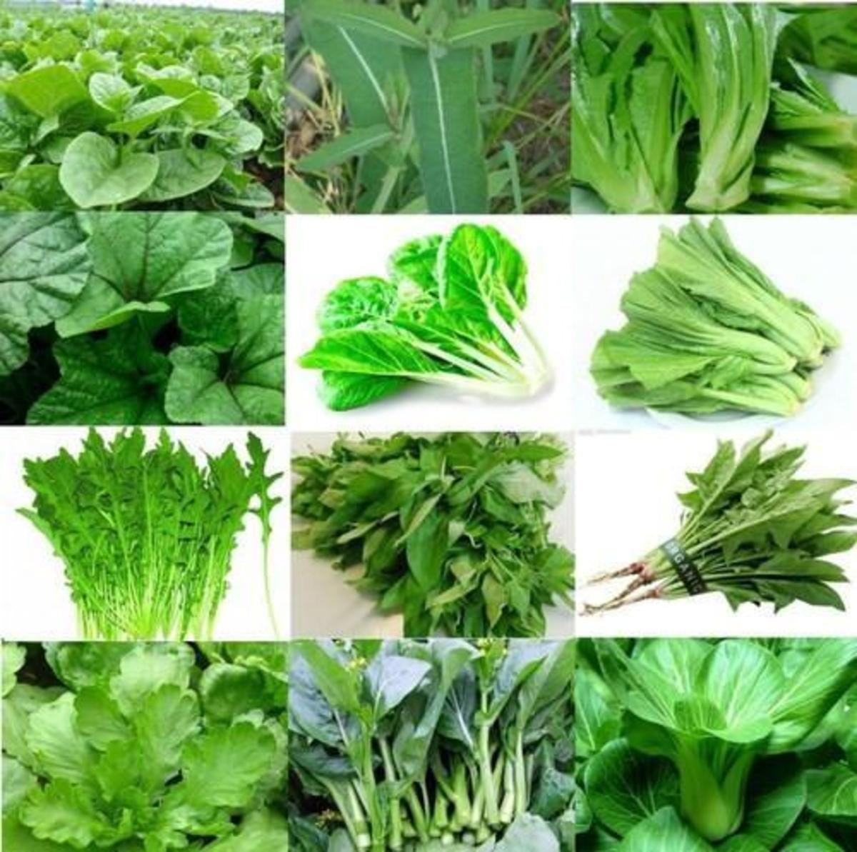 Health Benefits of Eating Green Leafy Vegetables