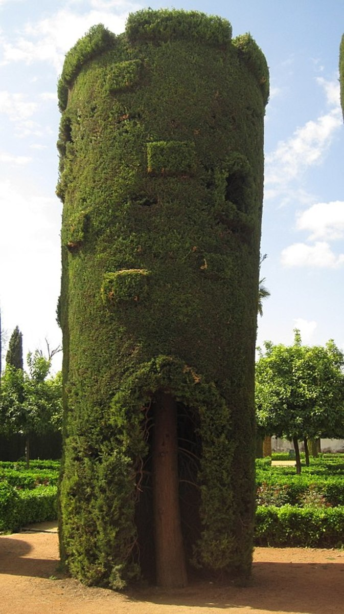 Treehouse in Córdoba, Spain