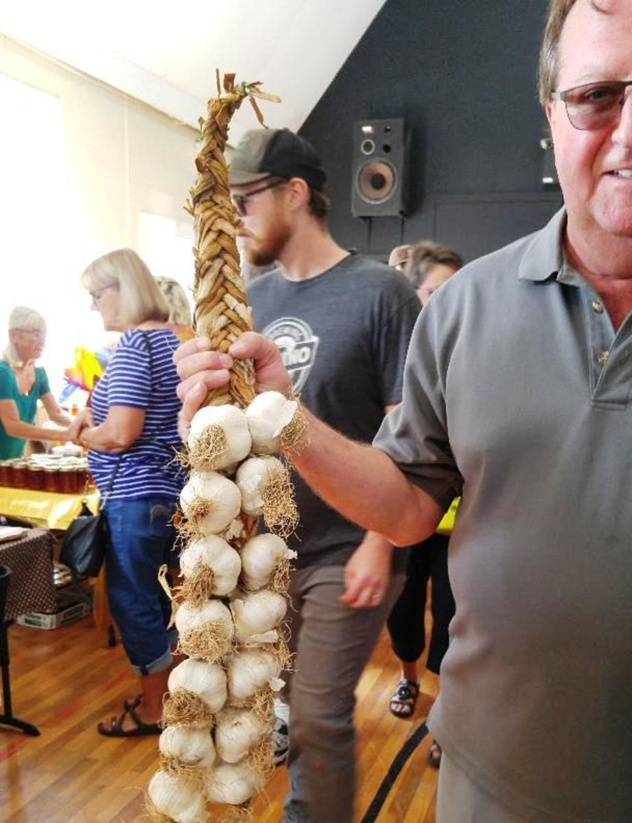 Garlic Festival Braided Garlic at the Merville Hall, Vancouver Island, BC