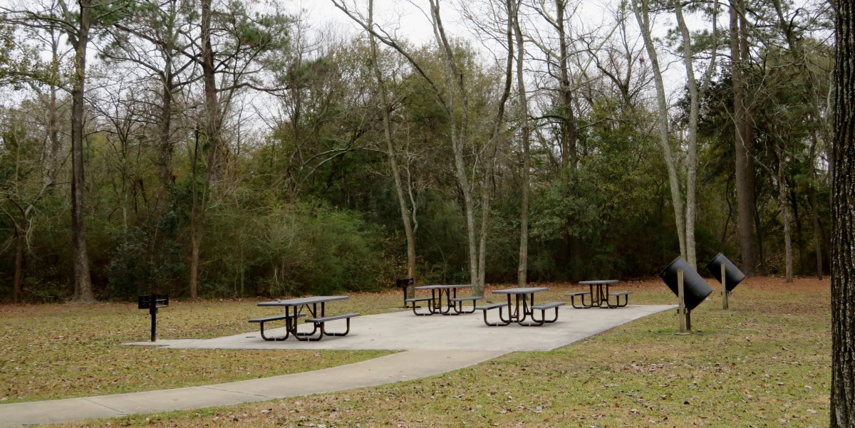 Keith-Wiess Park Picnic Tables