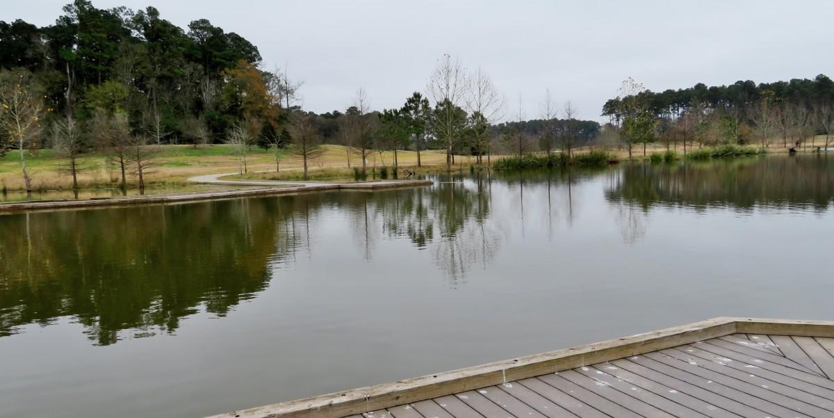 Views from raised boardwalk area