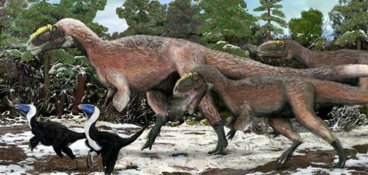 The feathered Tyrannosaurus, Yutyrannus. Photo from the Smithsonian Magazine.
