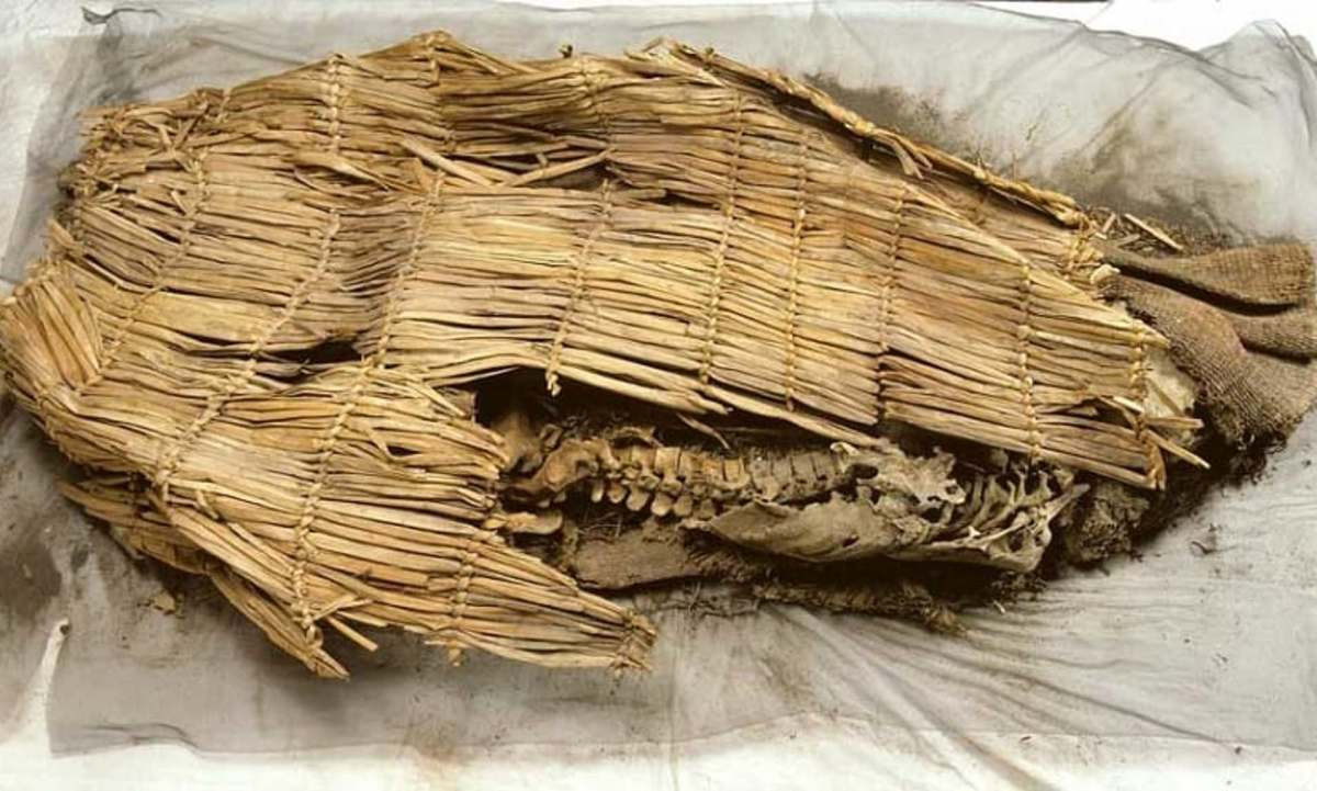 oldest-mummy-found-in-america-10-600-years-old