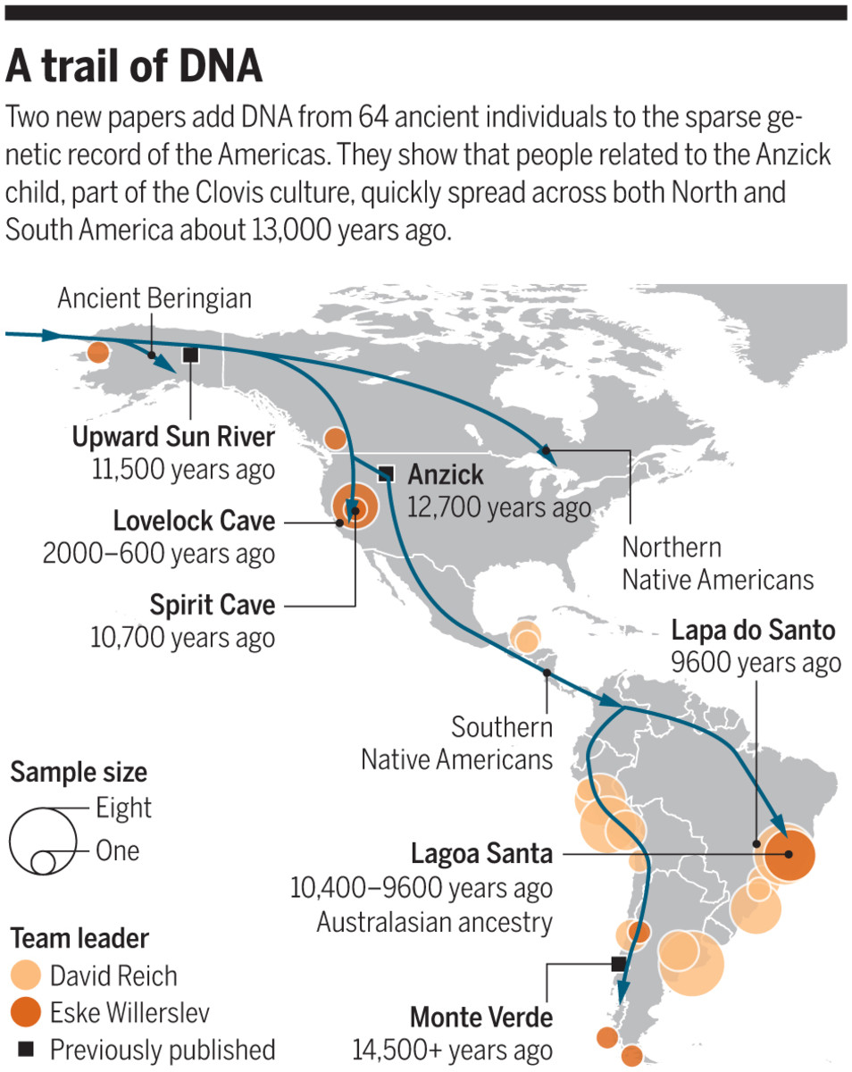 Dna Chart indigenous Groups