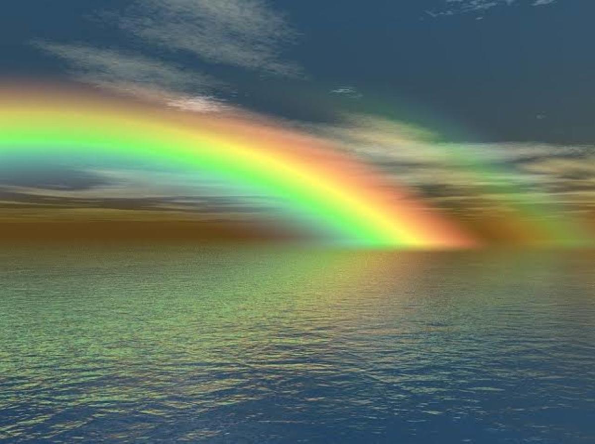 The colours of the Rainbow—VIBGYOR
