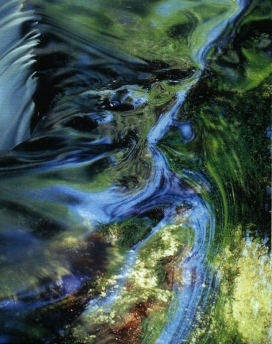"Wind & Water (aka ""Feng Shui"")"