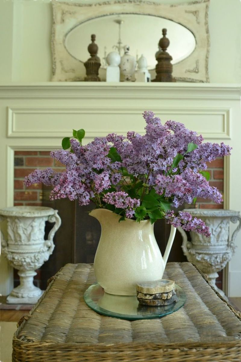 Heavenly lilacs