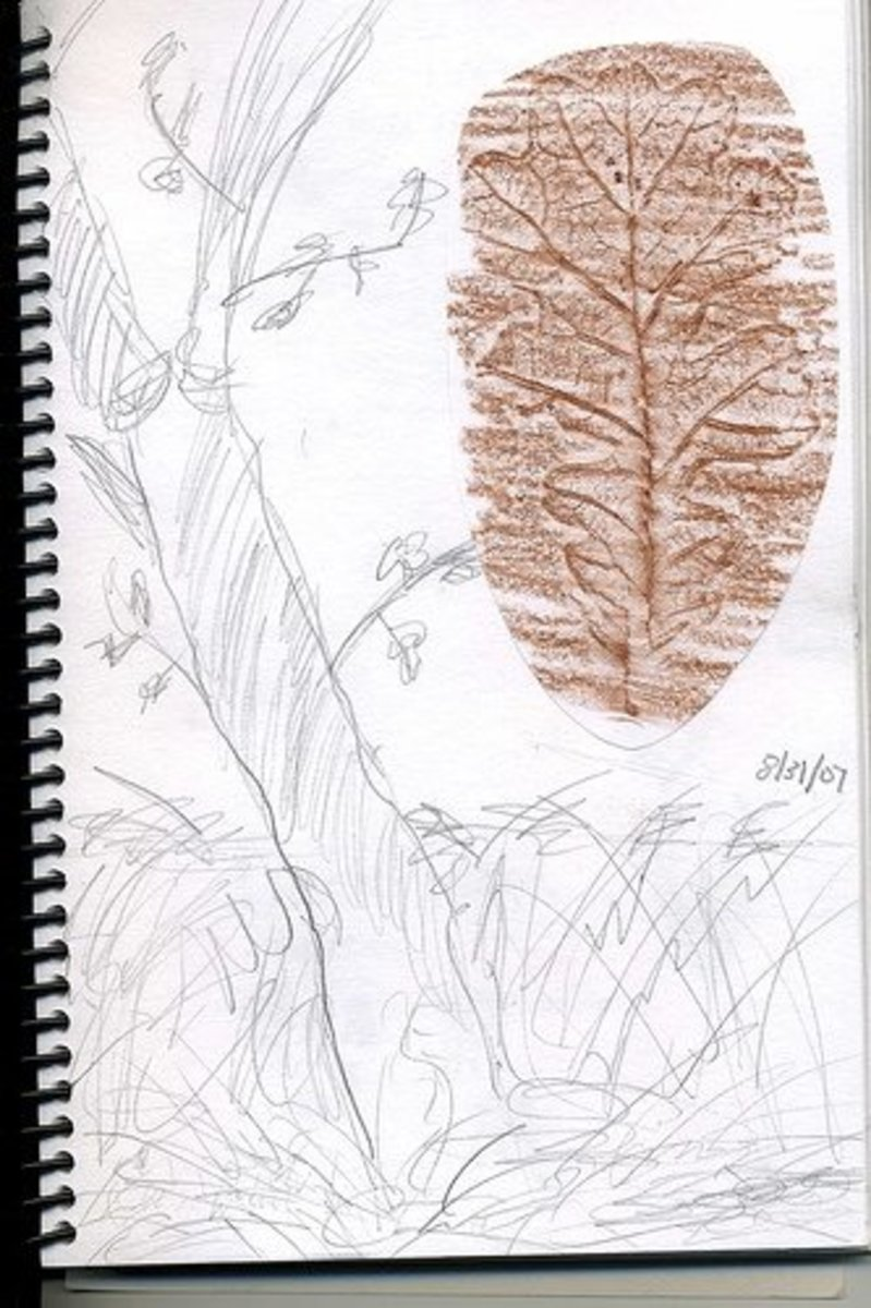 Include a Leaf Rubbing as Well as a Sketch