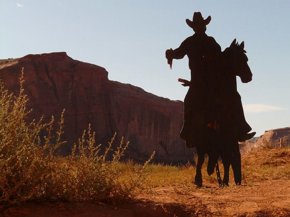 Watch out for the cowboys - make sure your driving instructor is legal!