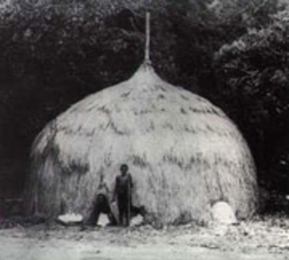 Meriam house of the Torres Strait Islands. Courtesy of Queensland Museum and Aboriginal Environments Research Centre.
