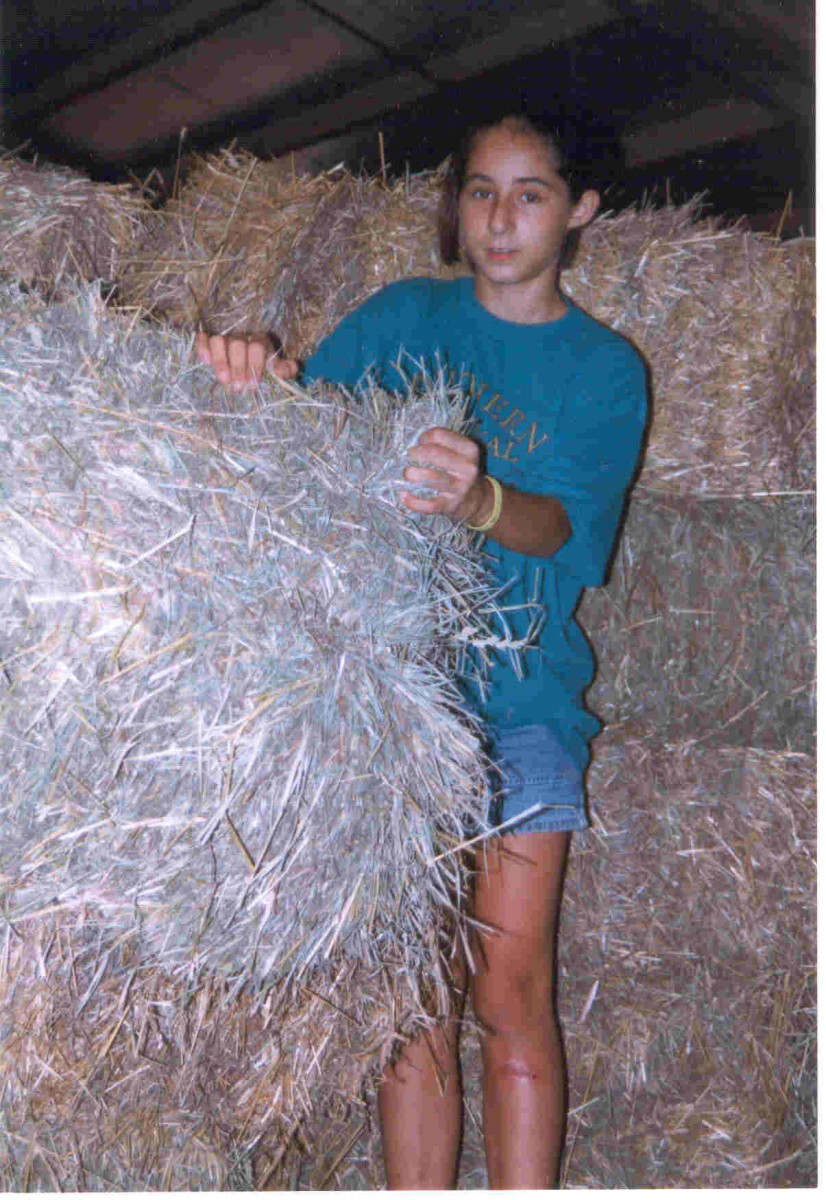 Square bales are easy to handle.