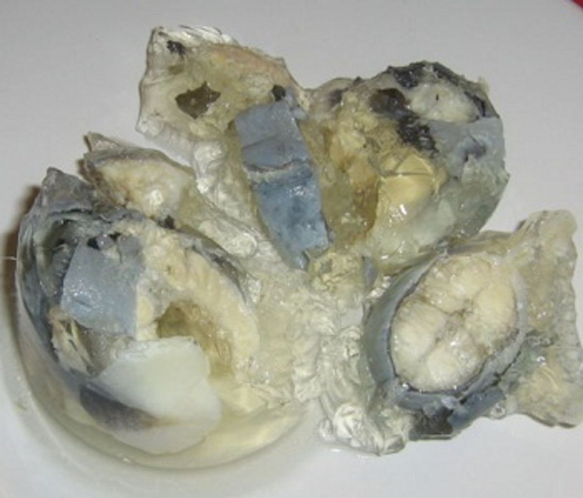 Jellied eels - they taste better than they look
