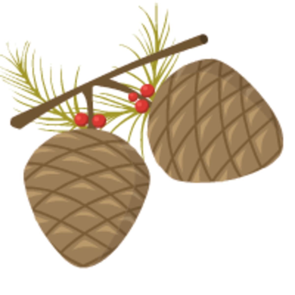 pine cones clip art