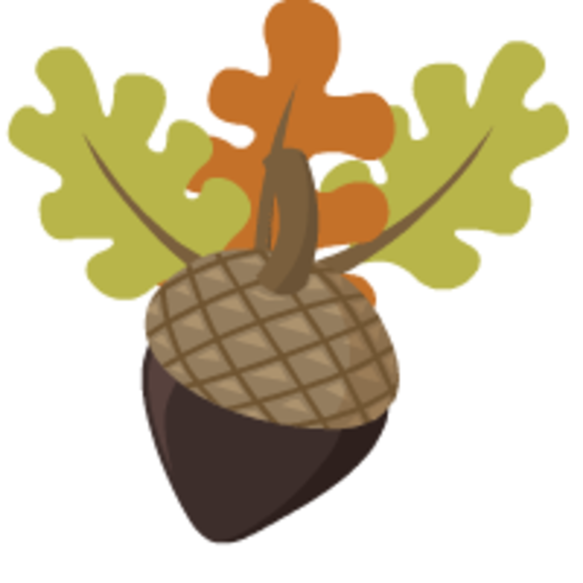 acorn with three oak leaves free clip art