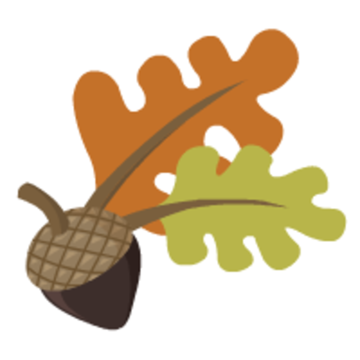 acorn with two large oak leaves clip art