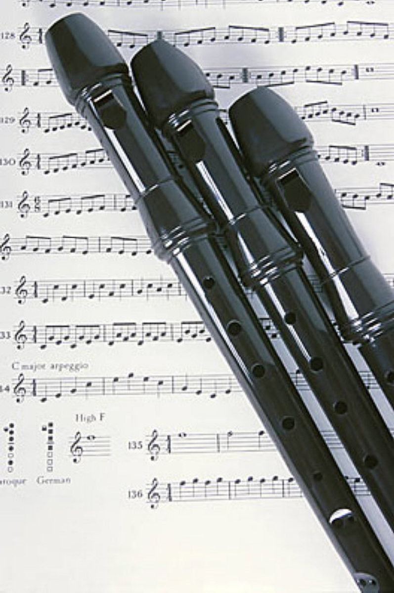 The recorder has three parts. The head has a mouthpiece you blow into. The middle has six finger-holes and a thumb hole. The foot has a hole for the little finger.