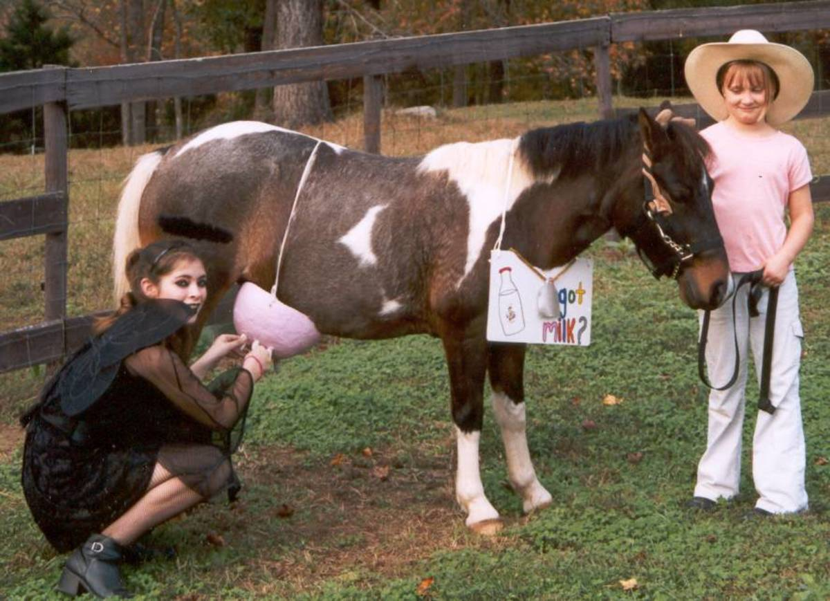 Horse's Costume Party
