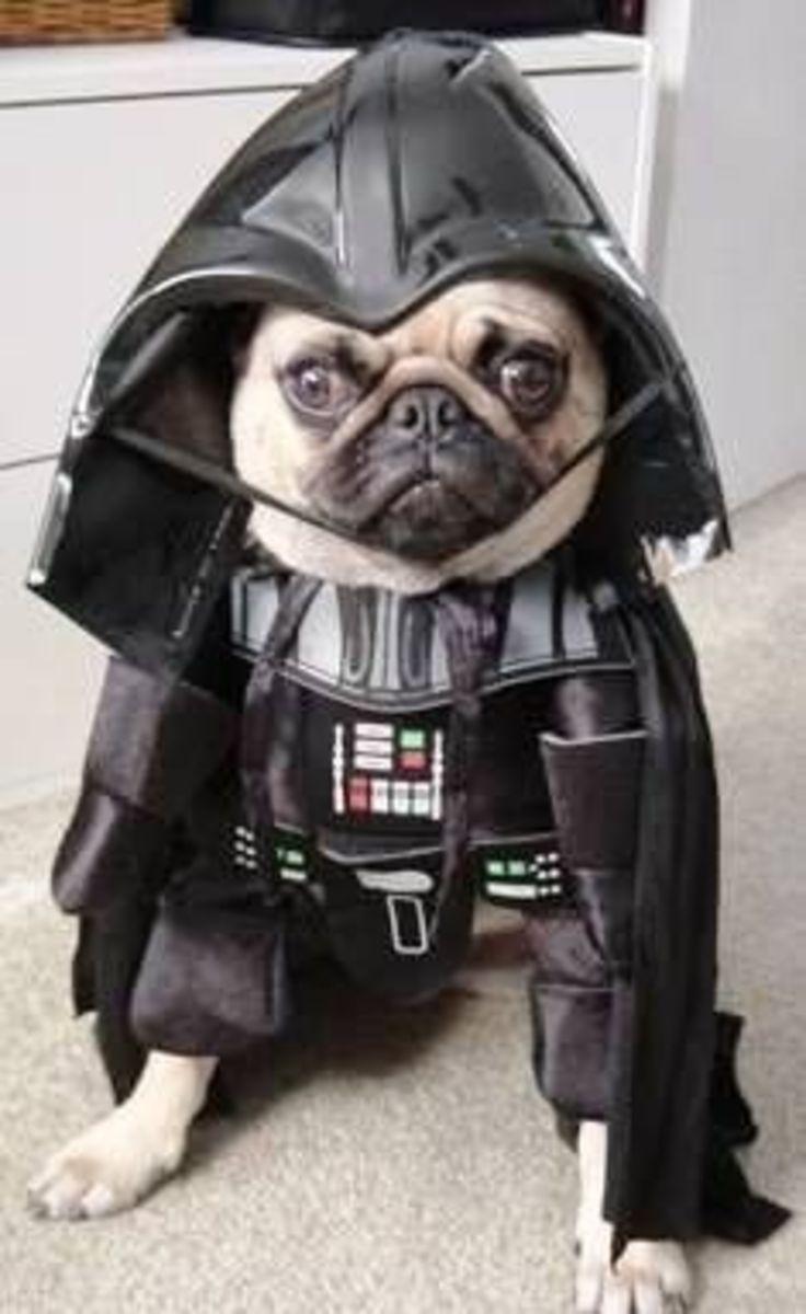 October 17th - Darth Vader