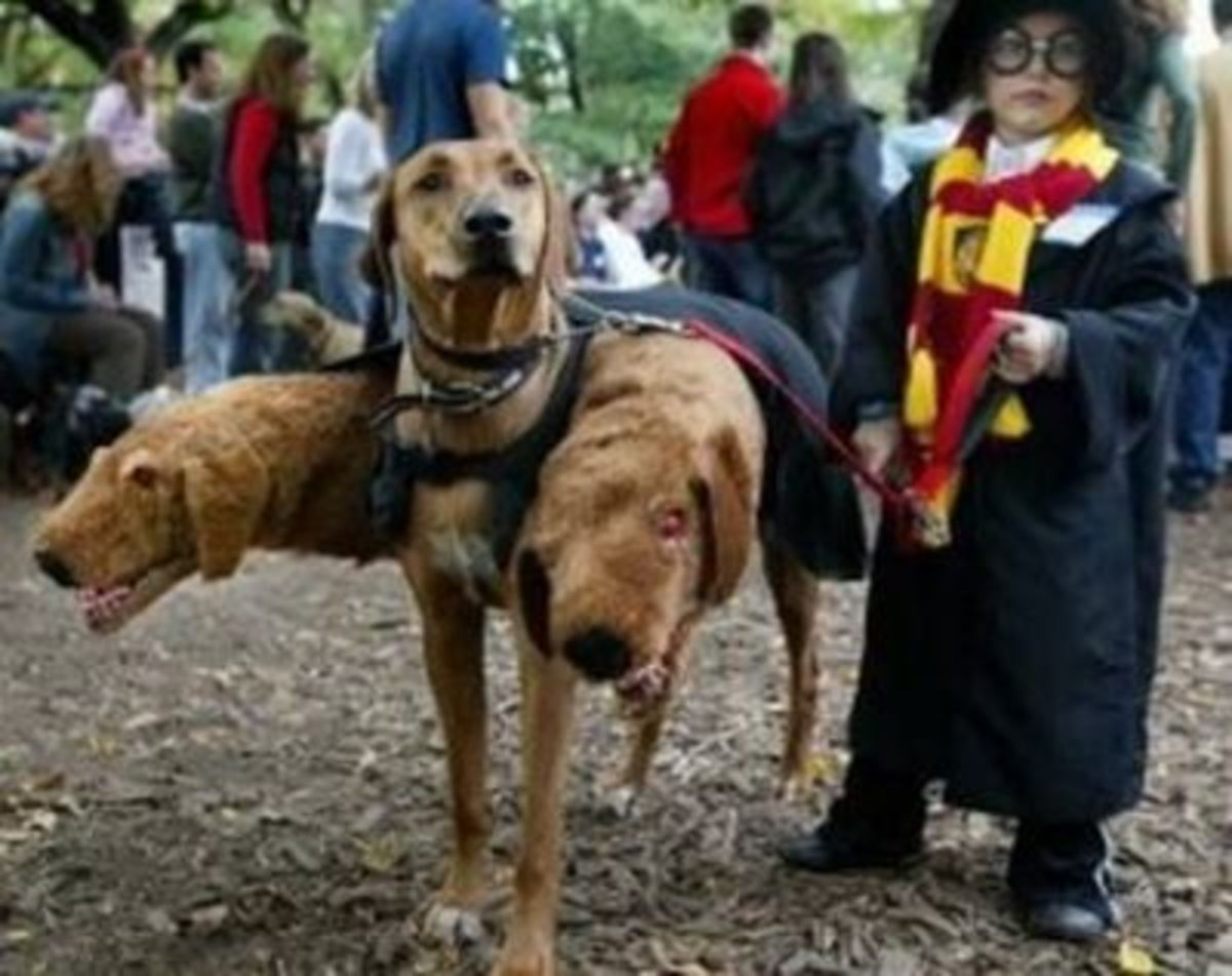 October 5th - Harry Potter