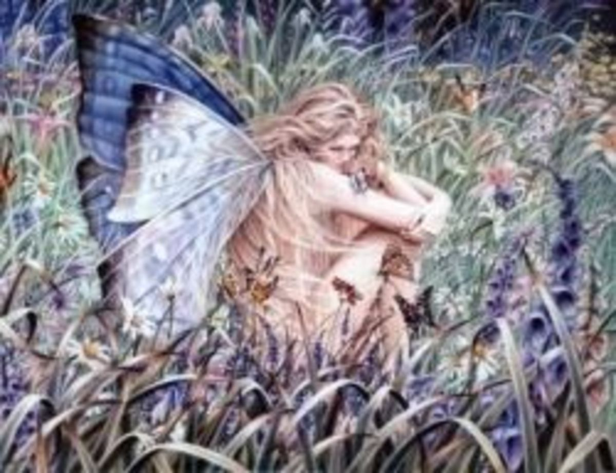The Secret Life of Fairies | HubPages