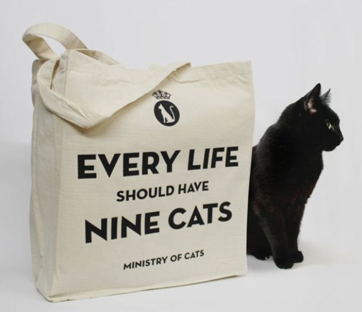 Words of Wisdom - 9 cats for every life