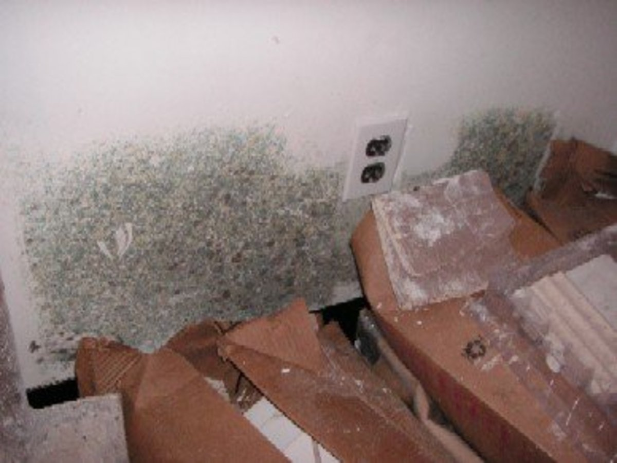 Surface Mold In Bathroom how to get rid of mold in the bathroom or in a hidden area. | hubpages