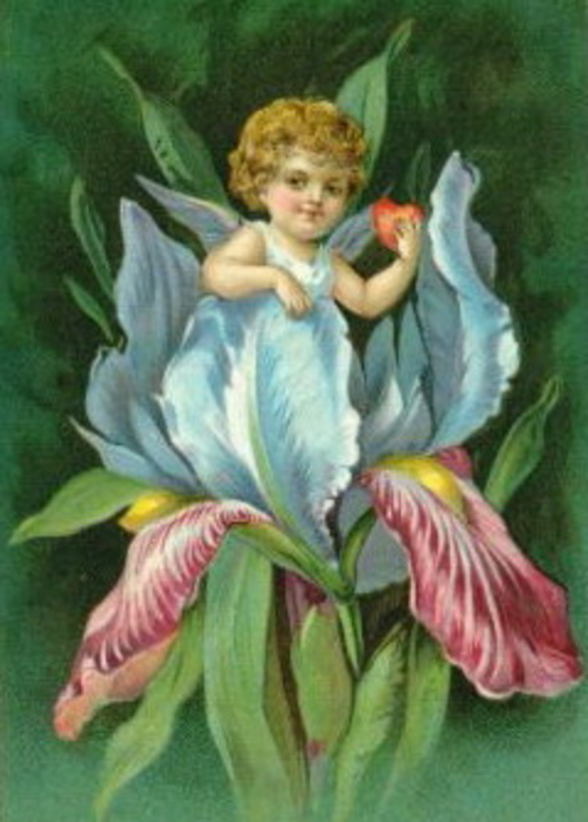 Vintage cupid in flower with heart