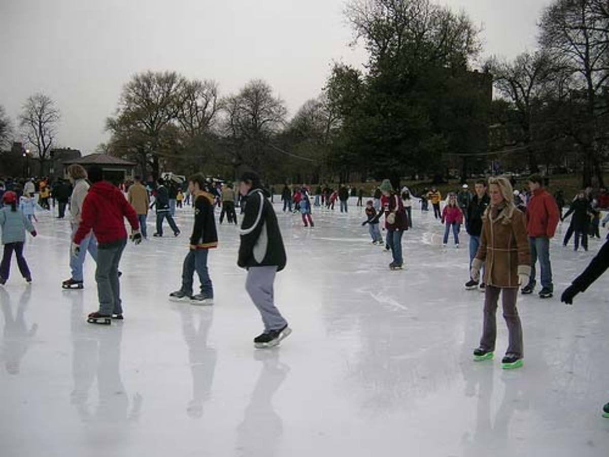 The Boston Common Frog Pond