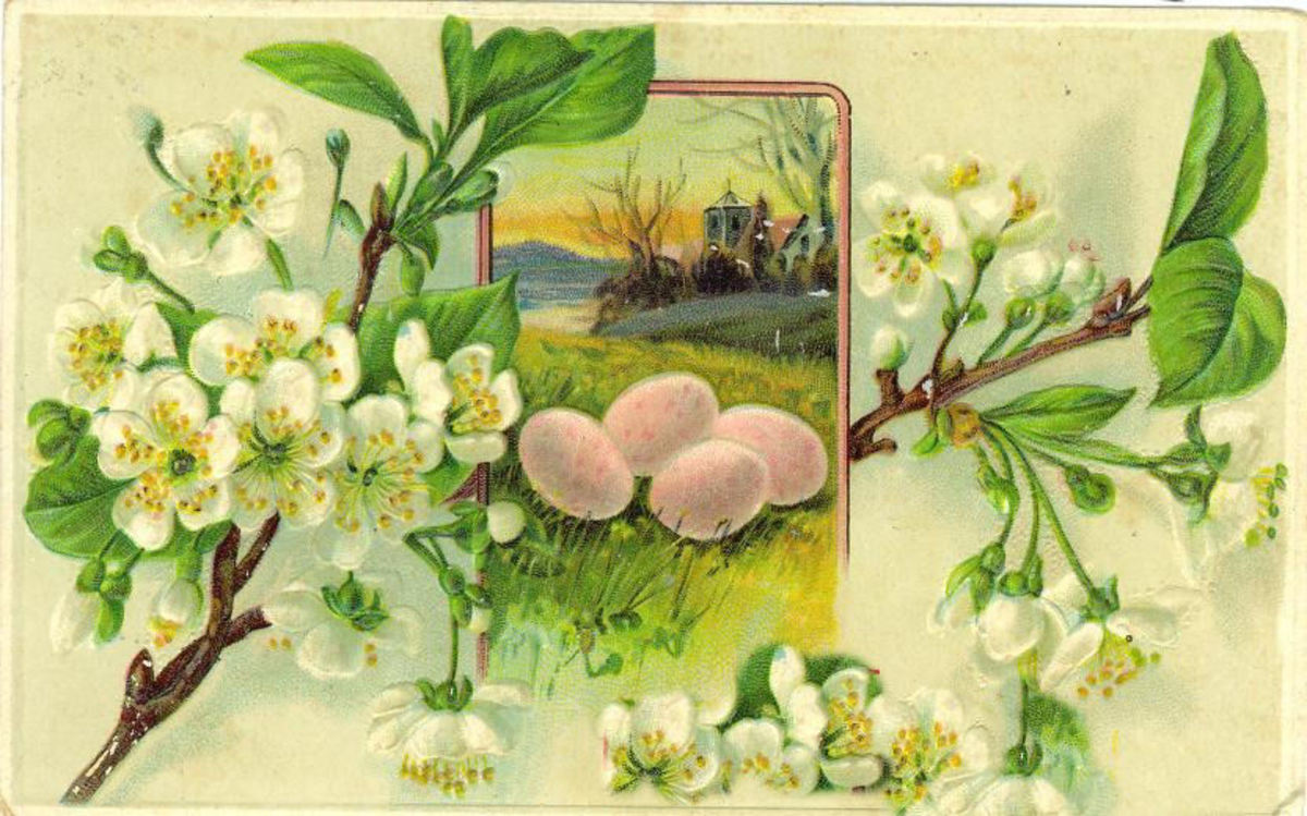 Easter flowers: Vintage Easter card with Easter eggs and white flowers on tree branches