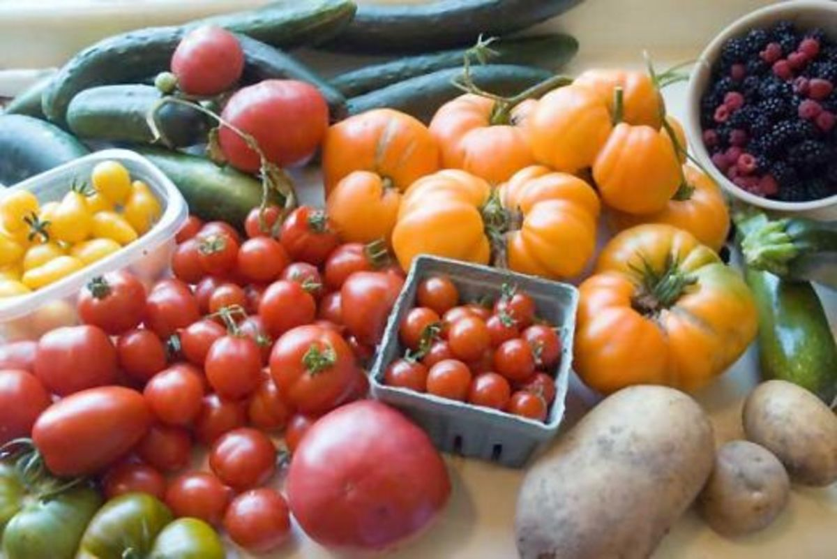 home-garden-dos-and-donts