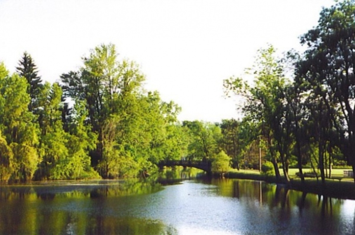 My hometown: Eaton Rapids, MI.  See how beautiful our world is?