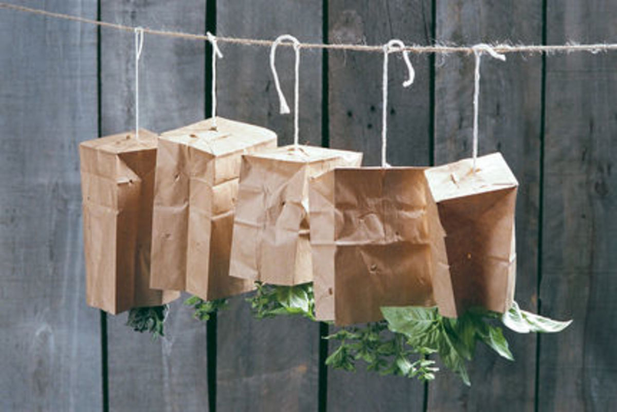 Putting a ventilated brown paper bag over the herbs shades from sunlight and protects from dust.