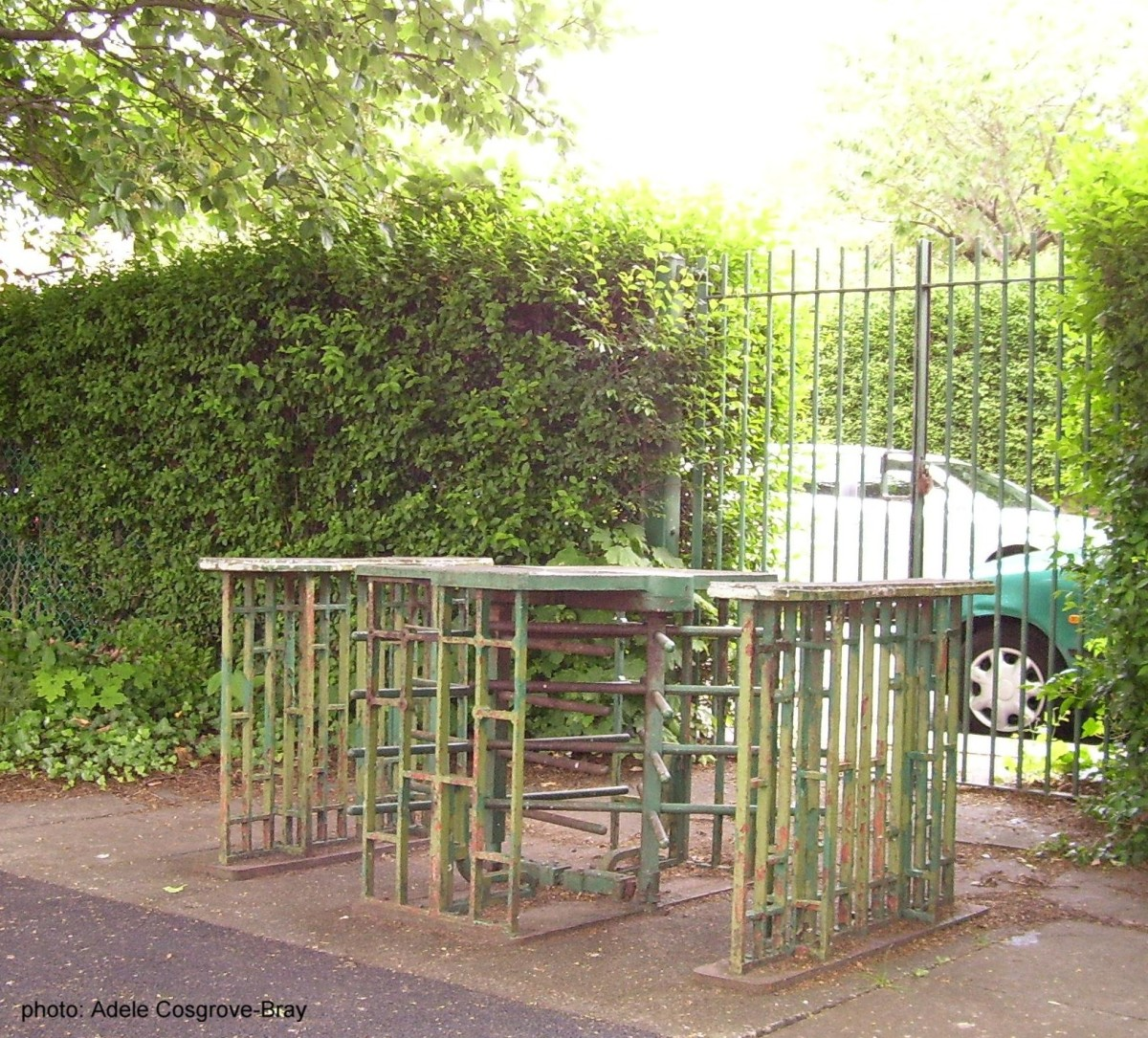 Turnstile, from the days when people paid a fee to enter Ashton Park.