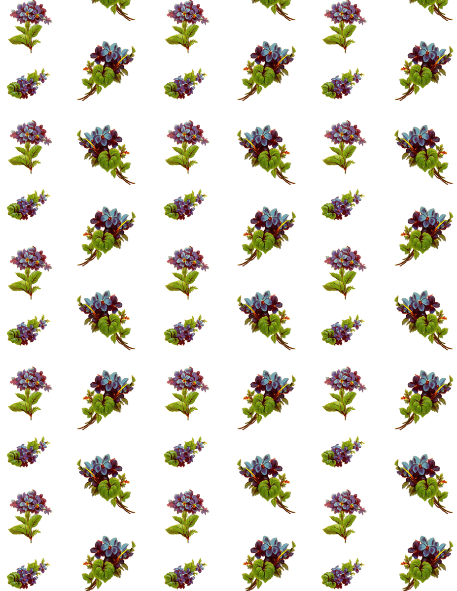 Free Victorian forget-me-nots scrapbook paper -- large