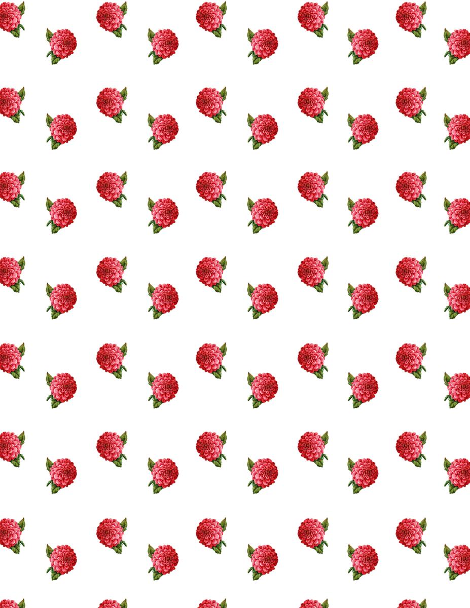 Free red chrysanthemum vintage flower scrapbook paper -- intermittent