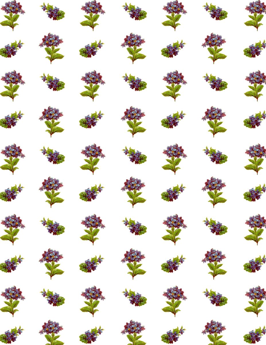 Free Victorian forget-me-nots scrapbook paper -- small