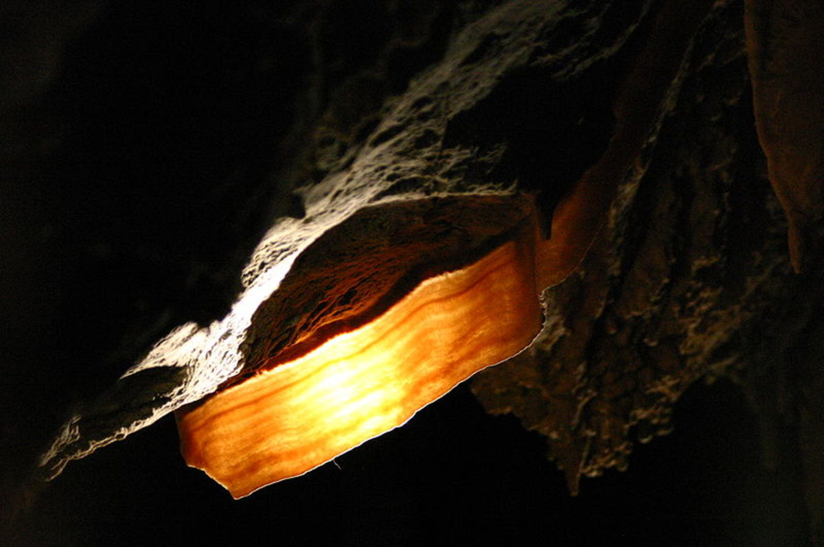 Back Illuninated Cave Bacon photo credit: Wikipedia Commons